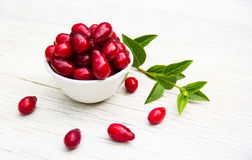 在一张白色桌上的新鲜的有机cornel莓果 季节性莓果 免版税库存照片