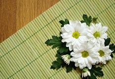 在一张竹席子的雏菊 库存照片