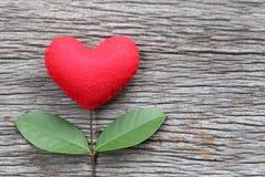 在一张老木桌安置的红色心脏连接用分支 库存照片