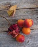 在一张老桌上的杏子 图库摄影