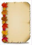 在一张老羊皮纸的秋叶 库存图片