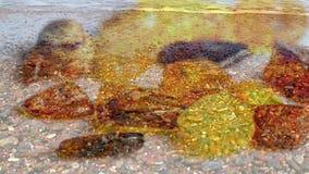 在一张轮桌上的琥珀色的石头与波罗的海的海浪 股票录像