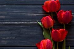 在一张黑桌上的红色郁金香 库存图片
