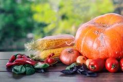 在一张黑暗的桌上的新鲜蔬菜 秋天背景特写镜头上色常春藤叶子橙红 吃健康 南瓜,甜椒,辣椒粉,蕃茄,蓬蒿 图库摄影