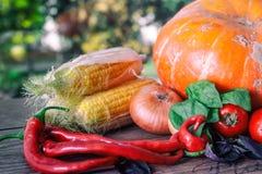 在一张黑暗的桌上的新鲜蔬菜 秋天背景特写镜头上色常春藤叶子橙红 吃健康 南瓜,甜椒,辣椒粉,蕃茄,蓬蒿 免版税库存照片