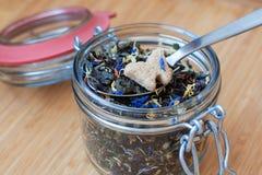在一把匙子的干茶叶有切片的糖 免版税库存照片