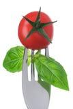 在一把叉子的蕃茄和蓬蒿在白色 免版税图库摄影