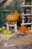在一把手工制造椅子的橙色南瓜 特写镜头 免版税库存图片