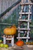 在一把手工制造椅子的橙色南瓜 特写镜头 库存图片