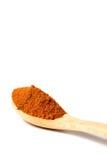 在一把木匙子的咖喱粉 免版税库存图片