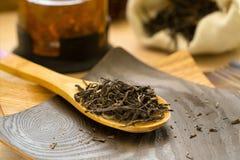 在一把木匙子的干燥茶puerh 库存图片