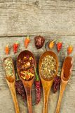 在一把木匙子的干辣椒 香料销售  做广告待售 不同的种类辣椒 免版税库存照片