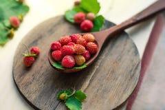 在一把木匙子的开胃野草莓在桌上 在早晨光,一个健康早餐饮食概念的莓果 免版税库存照片