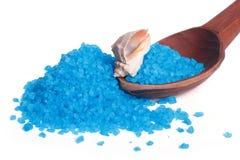 在一把木匙子的蓝色腌制槽用食盐和海壳 免版税库存图片