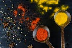 在一把木匙子的香料姜黄和辣椒粉在黑暗的背景 免版税库存图片
