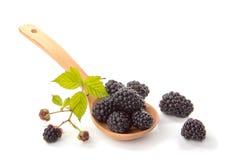 在一把木匙子,侧视图的黑莓 图库摄影