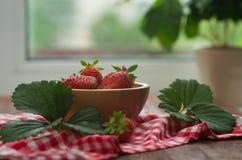 在一把木弓的草莓 免版税库存图片