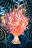 在一把柳条蓝色椅子的五颜六色的婚礼花束 图库摄影