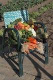 在一把椅子的菜在外部和庭院 免版税库存照片