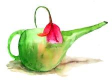 在一把绿色喷壶的郁金香花 库存照片