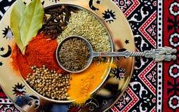 在一把美丽的卷曲匙子的五颜六色的东方香料在一个银色盛肉盘 免版税库存图片