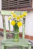 水仙在一把绿色椅子的一个花瓶开花 库存图片