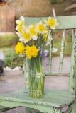水仙在一把绿色椅子的一个花瓶开花 免版税库存图片