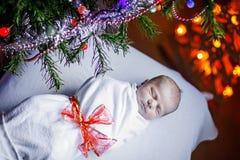 在一揽子近的圣诞树包裹的一个星期的新出生的婴孩 免版税库存图片