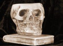 在一本古老书上的伟大的头骨 库存图片
