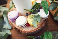 在一本圆材日志的五颜六色的蛋白杏仁饼干 库存图片