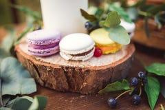 在一本圆材日志的五颜六色的蛋白杏仁饼干 库存照片