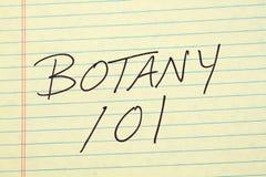 在一本黄色便笺簿的植物学 库存照片