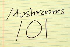 在一本黄色便笺簿的蘑菇101 免版税库存图片