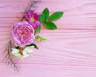 在一朵桃红色木背景茉莉花的玫瑰美好的花束季节框架,木兰 库存图片