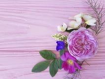 在一朵桃红色木背景茉莉花的玫瑰美好的花束设计季节框架,木兰 库存图片