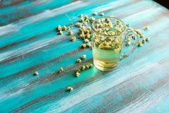 在一朵清楚的玻璃杯子和干春黄菊花的甘菊茶 免版税库存图片