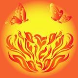 在一朵火热的花的蝴蝶 图库摄影