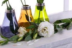 在一朵玫瑰的花瓶特写镜头的日本玫瑰在窗台的在窗台 库存图片