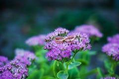 在一朵紫色花的婚戒 免版税库存照片