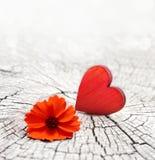 在一朵破裂的木背景和花的红色心脏 图库摄影