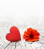 在一朵破裂的木背景和花的红色心脏 免版税库存图片