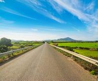 在一条乡下公路的蓝天春天 免版税图库摄影