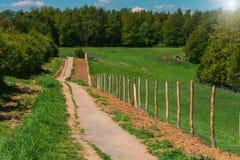 在一条供徒步旅行的小道的金属篱芭 库存图片