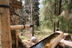 在一条供徒步旅行的小道的饮用水木管子 库存照片