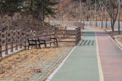 在一条公开自行车道路旁边的木公园长椅 免版税库存图片