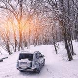 在一条冬天路的唯一汽车在森林里 库存图片