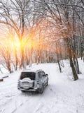 在一条冬天路的唯一汽车在森林里 免版税库存图片