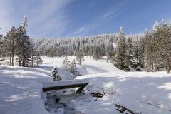 在一条冻小河的桥梁在一个美好的冬日在瑞士 库存图片