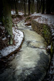 在一条冻河的冬天步行 免版税图库摄影
