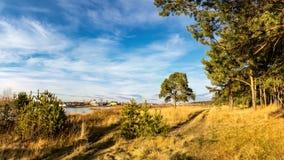 在一条冻河的秋天风景有在俄罗斯,乌拉尔的银行的树的 库存图片